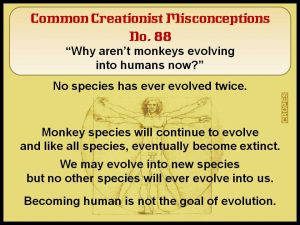 Why aren't monkey's evolving into humans now?