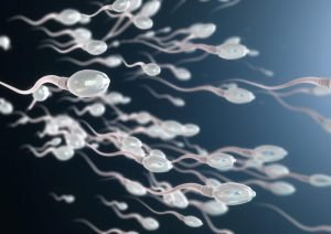 chance of you being the one sperm - statistical improbability
