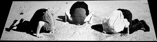 Denialists with their head in the sand