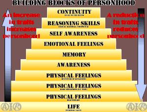 personhood pyramid